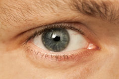 Close up photo of Caucasian man eye Royalty Free Stock Photo