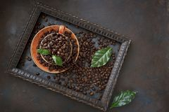 Close-up photo of cup with aroma coffee beans and fresh green leaves in frame on black table background. / Top view Royalty Free Stock Photos