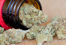Close up photo of dry marijuana buds Stock Photo