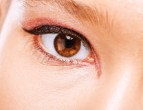 Close-up photo of eye. Close-up photo of brown beautiful eye Stock Image