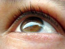 Close up photo of an eye Royalty Free Stock Photo