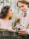 The close-up photo of the ferrets in the woven basket at the background of the blurred newlywed couple holding the Stock Photo