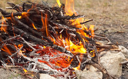 Close up photo of fire. Stock Photo