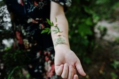 Close-up photo of a flower taped to a female arm. stock image