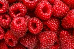 Close up photo of fresh raspberry. Nature berries background Royalty Free Stock Images