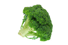 Close-up photo of green broccoli Royalty Free Stock Photography