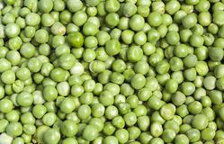 Green peas, close-up. Close-up photo of green peas having mold and defects Stock Photos