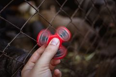 Close up photo of hand with red fidget spinner Royalty Free Stock Photos