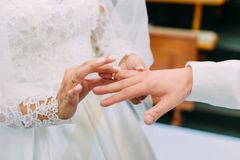 Close-up photo of the hands of the bride putting the wedding ring on the finger of the groom. royalty free stock photography