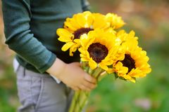 Close-up photo of little boy holding bunch of sunflowers outdoors stock images