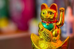 Close up photo a lucky cat royalty free stock photography