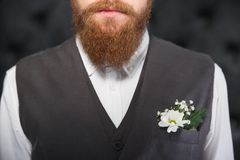 Close up photo of man beard Royalty Free Stock Images