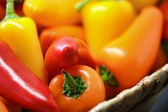 Close-up Photo of Orange and Red Bell Peppers stock photography