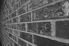 Black and white photo of a solid brick wall outside royalty free stock photo