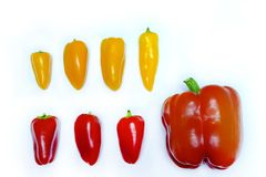 Red and yellow peppers in a row. Close up photo of peppers served on some snow white surface. There`re lots of washed peppers on the picture: red and yellow, a Stock Photography