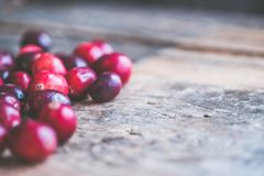 Close-up Photo of Red Coffee Beans Royalty Free Stock Images