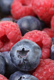 Close up photo of ripe  blueberry and raspberry Royalty Free Stock Photos