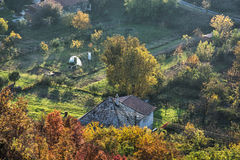 Close up photo of rural scene, seasonal natural theme. Close up photo of rural scene. Seasonal natural theme. Vibrant colors. House and gardens. Living in royalty free stock image