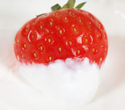 Close-up photo of sweet strawberry Stock Photos