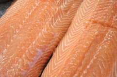 Close up photo taken on two slices of fresh salmon fish meat Stock Photos