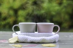 Close up photo of two cups with hot tea in white knitted scarf on wet table. With pink and yellow leaves after rain in garden outside. Warming drink together royalty free stock photo