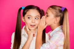 Close up photo two small little age girls tell talk speak ear over novelty school homework pupils wearing casual jeans. Denim checkered plaid shirts isolated royalty free stock photography