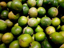 Close up of photo of very fresh green limes background A lot of lime Royalty Free Stock Photos