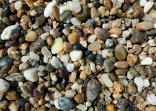 Pebbles on the beach. Close up photo of wet pebbles on the beach Royalty Free Stock Photos