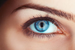 Close up photo of woman's blue eye. In studio Stock Photo