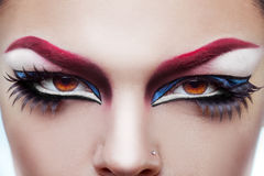 Close up photo of womans eyes with make up and healthy skin Stock Images