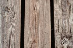Close-up photo of a wooden footpath in a forest. Royalty Free Stock Images