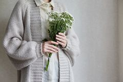 Photo of young woman holding white flowers with green stem in her hands. Close up photo of young woman wearing grey cardigan, white shirt, holding white flowers royalty free stock images