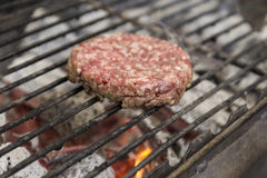 Close up photograph of grilled beef burger Stock Photography