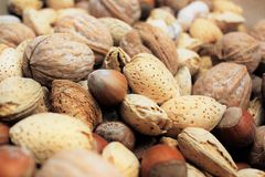 Mixed nuts in shell. A close up photograph of mixed nuts in the shell. Included are walnut, almond and hazelnuts royalty free stock photo
