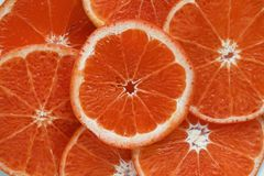 Close Up Photograph of Slices Orange Citrus Fruits royalty free stock images