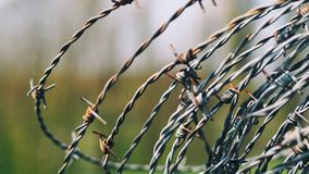 Close-Up Photography of Barbed Wire Stock Photography