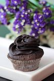 Close-up Photography of Chocolate Cupcake royalty free stock photo
