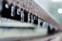 Close Up Photography of Icicles Royalty Free Stock Images