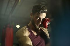 Close-up Photography of Man Wearing Boxing Gloves Stock Photography