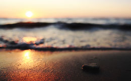 Close Up Photography of a Pebble Near the Beach Royalty Free Stock Images