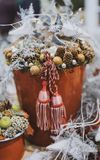 Close Up Photography of Pine Cone in Tassel Bucket Royalty Free Stock Photography