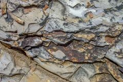 Close-up photography of sedimentary rock texture III royalty free stock photography