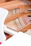 Close up of piano chords Stock Image