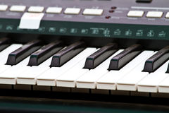 Close up of piano key, front view Royalty Free Stock Images