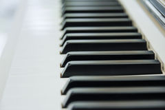 Close-up of Piano Keyboard centred on Ab with plenty of white sp. Ace Royalty Free Stock Photo