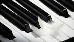 Close-up piano keyboard and flying away white feather. Concept of creativity and inspiration stock video