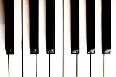 Close-up of piano keys. close frontal view. Royalty Free Stock Photography