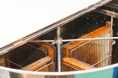 Fresh bee honey from honeycomb Stock Photo