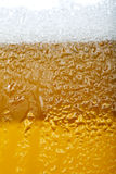 Close-up picture of a beer with foam and bubbles Royalty Free Stock Images