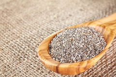 Close up picture of Chia seeds in a wooden spoon. Stock Images